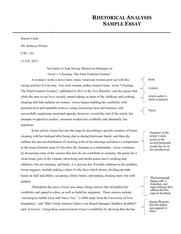 Rhetorical Analysis Essay Example (PDF)