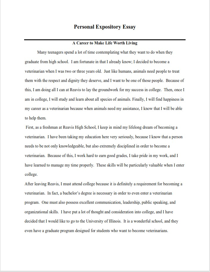 Personal Expository Essay Example