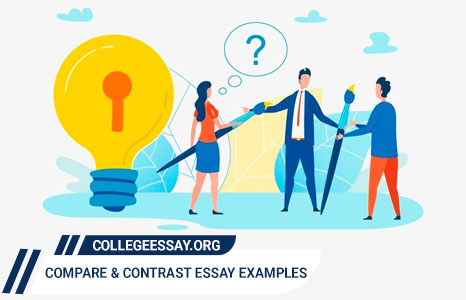 Interesting Compare and Contrast Essay Examples