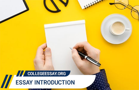 essay introduction writing